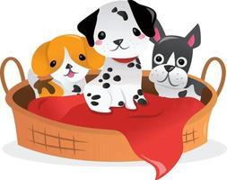 dessin animé trois chiots autour du lit pour animaux de compagnie