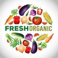 légumes biologiques frais, nourriture saine, mode de vie ou régime sain vecteur