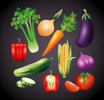 légumes biologiques frais, alimentation saine, mode de vie sain ou régime alimentaire sur fond noir vecteur
