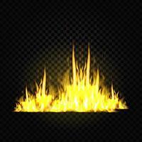 flammes de feu isolés sur fond noir vecteur