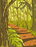 hoh rainforest in olympic national park washington state états unis wpa poster art vecteur