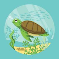 Illustration de tortues vecteur