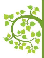 vecteur graphique illustration arbre bodhi