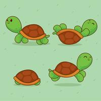 Vecteur de tortues de dessin animé