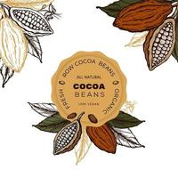 étiquette de croquis dessiné main de fèves de cacao. vecteur