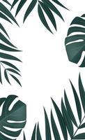 feuilles de palmier tropical réaliste naturel sur fond blanc