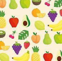 fond de fruits tropicaux vecteur