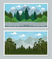 paysage avec bannière de pins set vector design