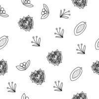 modèle sans couture de ligne de fruits tropicaux. fond botanique noir et blanc. illustration vectorielle été vecteur