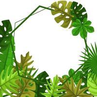 modèle de fond de polygone avec cadre de bordure de feuilles tropicales vecteur