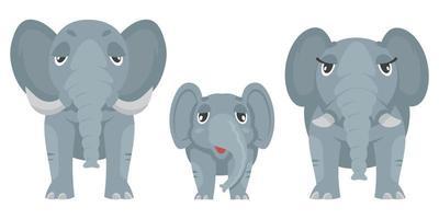 vue de face de la famille des éléphants. vecteur