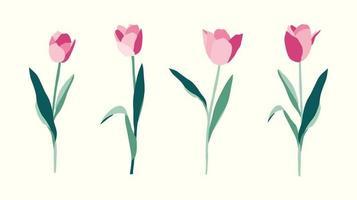 ensemble de fleurs de tulipes illustration dessinée à la main sur fond blanc vecteur