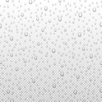 gouttes de pluie d'eau ou douche à vapeur isolée. gouttelettes pures réalistes condensées, illustration vectorielle vecteur