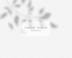 effet de superposition d'ombre. ombres naturelles isolées. illustration vectorielle. vecteur