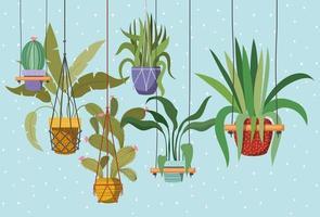 plantes d'intérieur dans des cintres en macramé vecteur