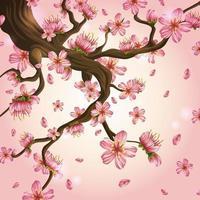 belle fleur de cerisier en fond rose vecteur