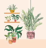 plantes d'intérieur dans des cintres et des étagères en macramé vecteur