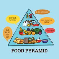 Pyramides alimentaires vecteur