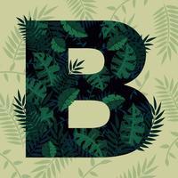 Lettre B Typographie vecteur