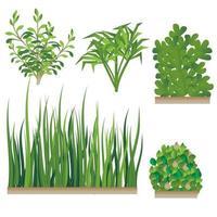 ensemble herbe et buisson vecteur