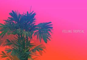 vecteur de style plat élégant de palmier arec. isoler sur fond rose et orange néon lumineux. sentiment esthétique d'émotion nostalgique