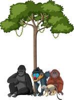 animaux sauvages avec arbre de la forêt tropicale sur fond blanc vecteur