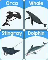 carte de mot anglais pédagogique de mammifères marins