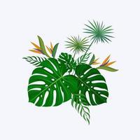 bouquet décoratif de feuilles de monstera vecteur