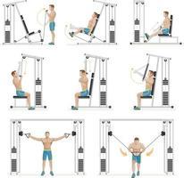 gym exercices machines équipements sportifs. illustration vectorielle.