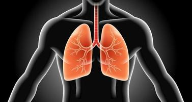 illustrations vectorielles de radiographie pulmonaire. vecteur