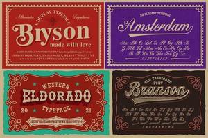 un ensemble de polices différentes dans un style rétro, ces polices sont parfaites pour les étiquettes d'alcool, les emballages vintage, les affiches et de nombreux autres produits créatifs vecteur
