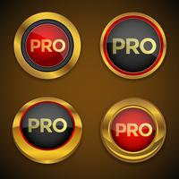 Bouton d'icône Pro Gold vecteur