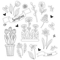 temps de printemps. ensemble de fleurs de printemps - camomille, jonquille, tulipe, pissenlit, violette et saule et pot de fleurs. vecteur. ligne, contour. plantes décoratives pour l'impression, le design, la décoration et les cartes postales vecteur