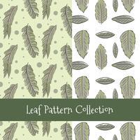 Collection de motifs de feuilles