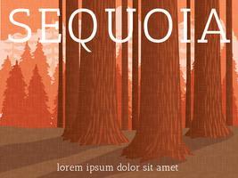 Affiche du parc national de Sequoia