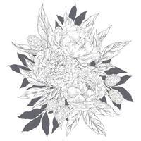 bouquet de pivoines décoratives vecteur