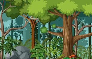 scène de forêt avec de nombreux arbres vecteur