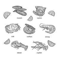 ensemble de fruits de mer sur fond blanc, illustration vectorielle dessinés à la main. vecteur
