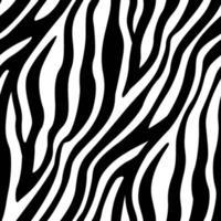 rayures zébrées motif sans soudure fond peau animale vecteur