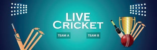 match de tournoi de cricket en direct avec trophée vecteur