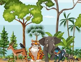 scène de forêt tropicale avec des animaux sauvages vecteur