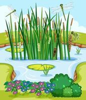 scène de la nature avec étang et libellules vecteur