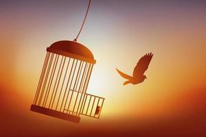 la liberté d'un oiseau sortant de sa cage. vecteur