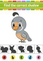 trouver la caille d'ombre correcte. feuille de travail sur le développement de l'éducation. page d'activité. jeu de couleurs pour enfants. illustration vectorielle isolé. personnage de dessin animé.