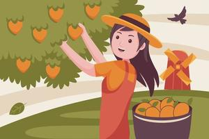 agricultrice cueille les fruits du manguier. vecteur