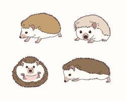 illustration de hérisson mignon. vecteur
