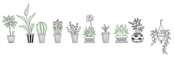 ensemble de plantes d'intérieur mignonnes en pots, dessin à la main. ensemble botanique - beaucoup de pots de fleurs - cactus, tulipes, fleurs, pousses. dessin vectoriel de ligne
