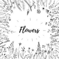 éléments de fleurs vectorielles esquissées à la main. sauvage et libre. parfait pour les invitations, les cartes de voeux, les citations, les blogs, les cadres de mariage, les affiches et les tissus. vecteur