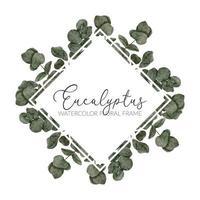 illustration de bordure de cadre aquarelle feuille d'eucalyptus vecteur