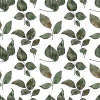 feuille de feuillage de verdure aquarelle transparente motif vecteur